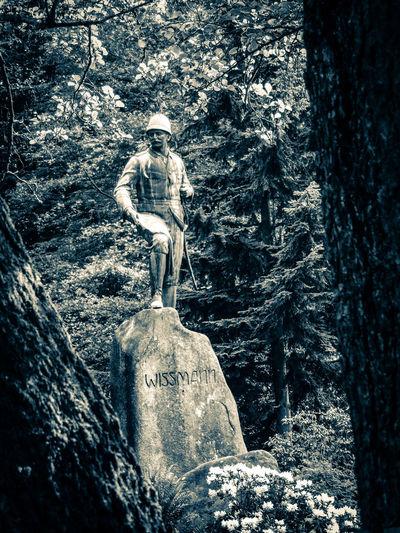 Das Wissmann Denkmal in Bad Lauterberg First Eyeem Photo Park Niedersachsen Harz Harzerstyle Bad Lauterberg Im Harz Harzreise Denkmal