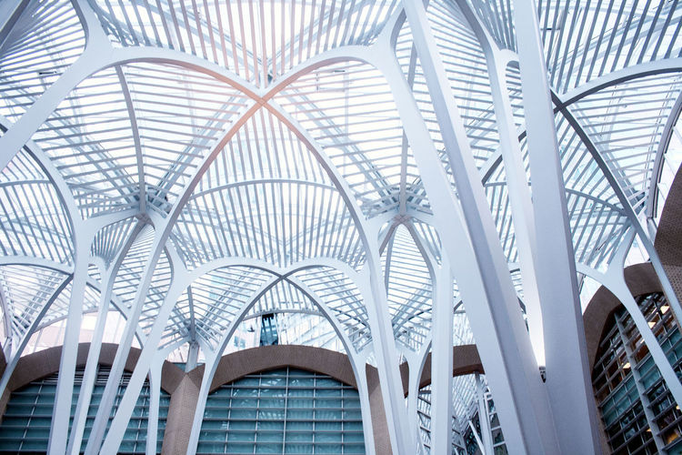 Looking up to the glass ceiling. Architecture Ceiling Lights Low Angle View SUPPORT Skylight Arch Architecture Built Structure Day Glass Ceiling Indoors  Interior Modern No People White