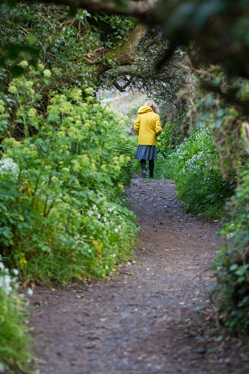 Rear View Of Woman Walking On Footpath Amidst Trees And Plants