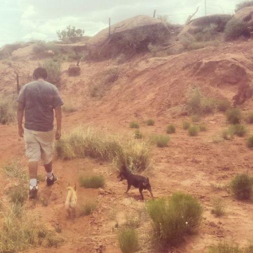 Arizona AZ Holbrook Holbrookaz holbrookarizona canyon shade rocks dirt desert cliffs tylersspot chill sunburnt sunburn hiking dogs pups hunter minpin chihuahua terrier terriermix blacknbrown oursons twinkie whitefur