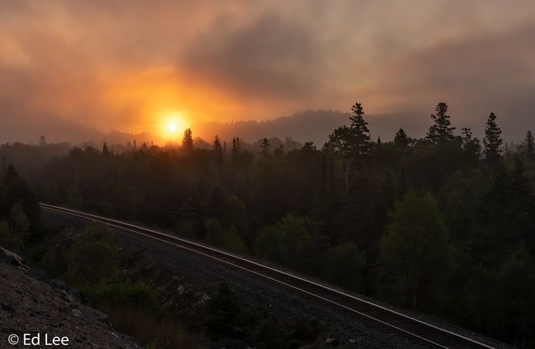 Foggy sunrise on the Trans-Canadian Hwy. Canada Traveling Landscape_Collection Streamzoofamily Malephotographerofthemonth Sunset Sky Tree Plant Nature Cloud - Sky Beauty In Nature Rail Transportation Sun Orange Color No People Track Scenics - Nature Tranquility Tranquil Scene Railroad Track Sunlight Outdoors