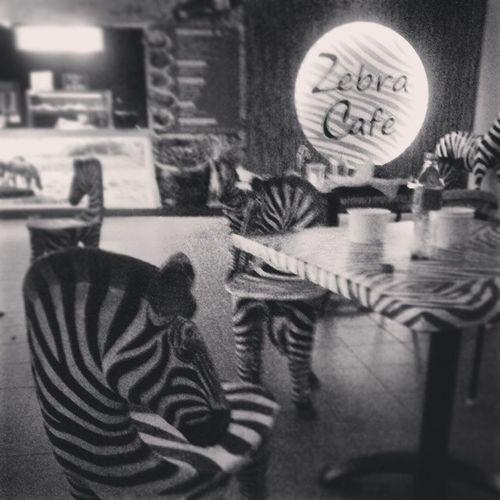 Zebracafe Zoo