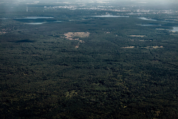 A Bird's Eye View Aerial Shot Edge Of The World Exploring New Ground EyeEm Nature Lover Finding New Frontiers Sublime Living The Week On EyeEm Aerial View Beauty In Nature Day Landscape Mountain Nature Outdoors Scenics Sky High Tranquil Scene Tranquility Trees Shaping The Future. Together. Environment Looking Into The Future Volcanic Landscape Travel Destinations Lost In The Landscape