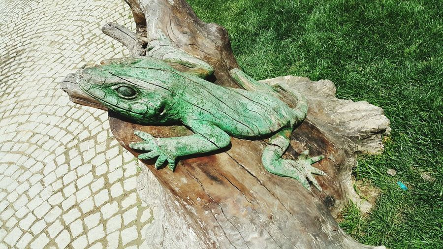 Wooden Lizard Statue At Park