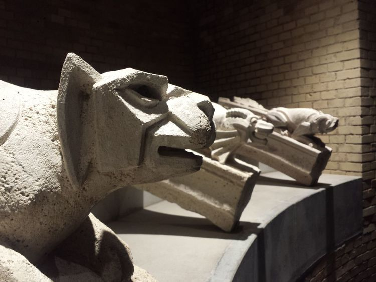 Art Art And Craft Cat Cats Close Close Up Close-up Day Gargoyles Hungary Culture Hungary Photos Indoors  Inside Inside Photography Inside Things Monster Monsters Museum Museums No People Nopeople Sculpture Statue Stone - Object Stone Material
