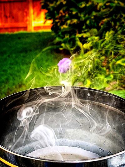 Close-up of smoke emitting from flower
