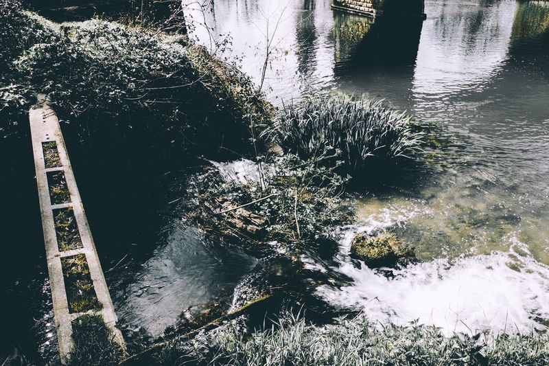 Water Moody Crushed Black White Lightroom Pathway Nature Urban