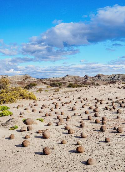 Flock of rocks on land against sky