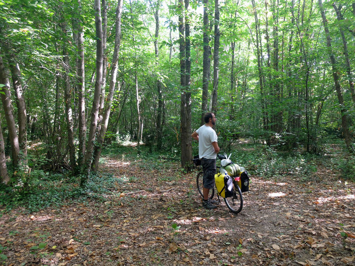 Bike Adventure Adults Only Adventure Bicycle Bike Packing Bike Touring Biker Cycling Cycling Helmet Day Forest Full Length Headwear Helmet Motion Motorcycle Mountain Bike Nature One Man Only One Person Outdoors Pedal People Riding Transportation Tree Tree Trunk Velodyssee WoodLand