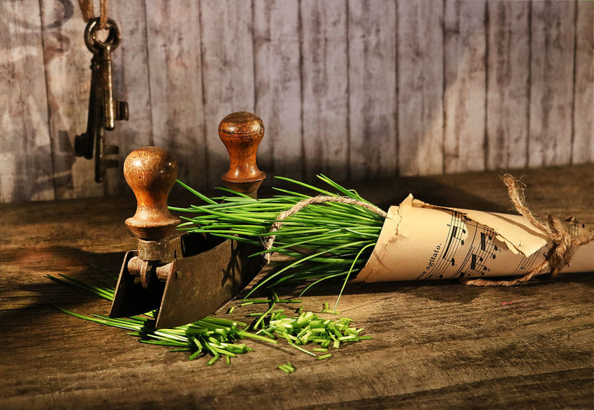 Herb Herbs Vintage Kitvhen Nostalgia Wood Table Plant Country Life Chive