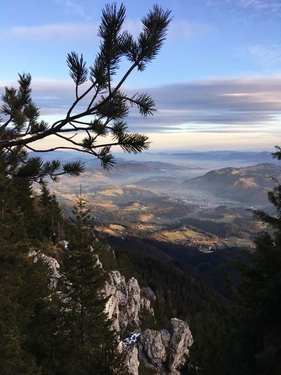 Slovenia Slovenia Scapes View Hiking Tree Sky Plant Beauty In Nature Nature Cloud - Sky Scenics - Nature No People Outdoors Building Exterior Growth Architecture Tranquility Landscape Tranquil Scene Land Day Water Branch