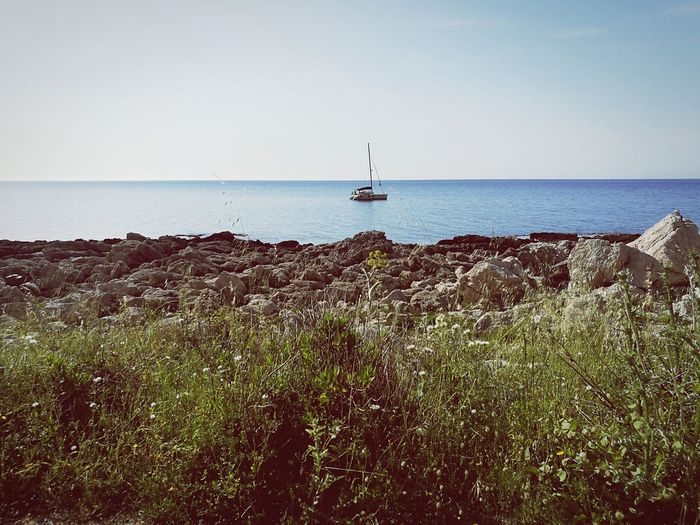 Mediterranean Vegetation Mediterranean Landscape Capo Gallo Sicily Palermo Water Nautical Vessel Sea Sailing Ship Clear Sky Lighthouse Beach Sky Horizon Over Water Sailboat Sailing Boat Seascape Sailing Boat Water Vehicle The Great Outdoors - 2018 EyeEm Awards