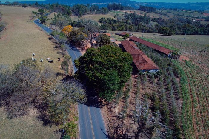 Coisas da Roça Rural Dronephotography Aerial View Aerial Shot Aerial Photography Sun High Angle View Agriculture Day Nature Outdoors Water Field Beauty In Nature Landscape Scenics No People Growth Rural Scene Terraced Field Sky Tree EyeEmNewHere Shades Of Winter