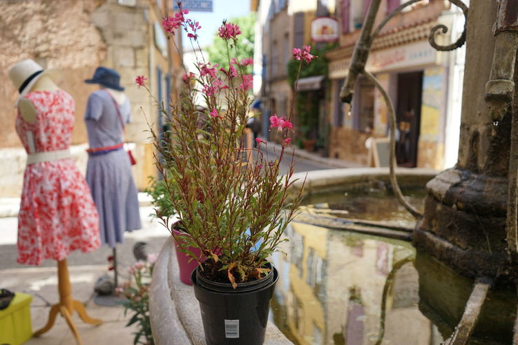 Fountain Provence Architecture Flower Flower Arrangement Flower Pot Growth Nature Plant Potted Plant Retail Display The Art Of Street Photography The Creative - 2019 EyeEm Awards The Traveler - 2019 EyeEm Awards