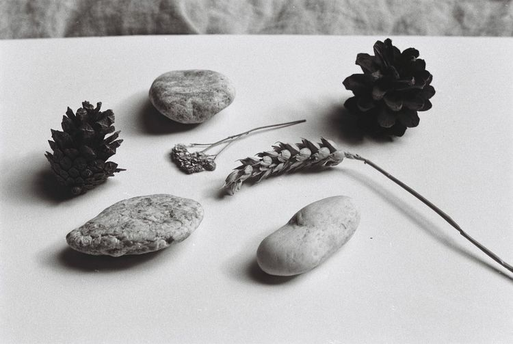 EyeEm Selects Still Life Indoors  Text High Angle View No People Western Script Rock Stone Nature