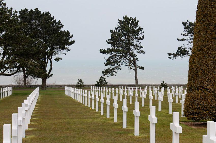 Normandie Soldatenfriedhof Graveyard Beauty Taking Photos Eye4photography  EyeEm Gallery History Historical Monuments