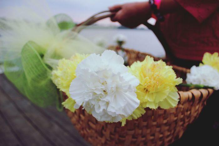 In Memory In Honor Of Cancer Sucks Flowers,Plants & Garden