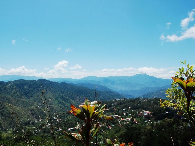 Summer Capital 😋 Mountain Beauty In Nature Mountain Range Beauty Landscape Scenics Nature EyeEm Nature Lover EyeEm Gallery EyeEm Best Shots Eyeem Philippines Travel Blues Clear Sky Vacations EyeEm Best Shots - Nature Getaways Province Philippines Baguio City, Philippines Cool