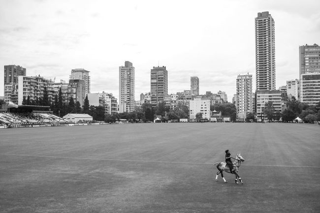 A polo game is about to begin. Animals Architecture B&w Photography Blackandwhite Building Exterior Built Structure City City Life Cityscape Cityscape Empty Space EyeEm Gallery Horse Outdoors Polo Polo Field Riding Skyscraper Urban Exploration Urban Skyline Adapted To The City