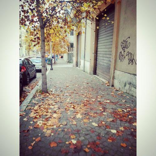 Ends Time Sky Autumn Colors #autum