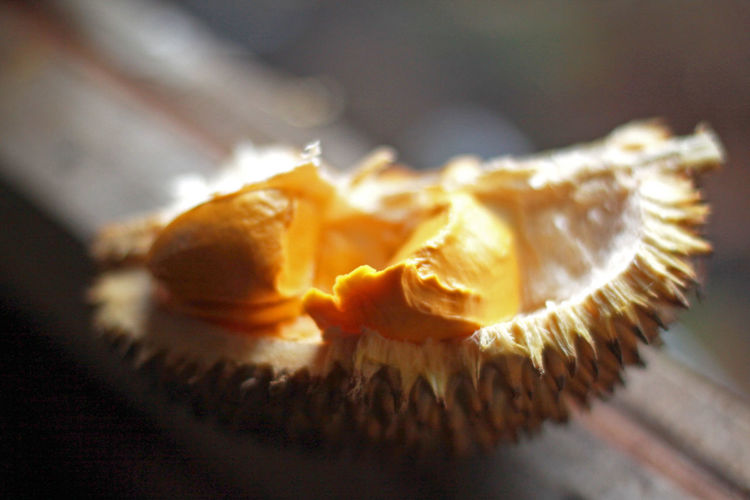 Durian Food Close-up Freshness No People Healthy Eating Wellbeing Fruit Selective Focus Focus On Foreground SLICE Still Life Durian EyeEm Best Shots EyeEm Selects EyeEm Gallery