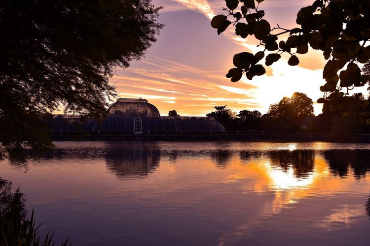 Sunset at Kew Gardens, Richmond, London Kew Gardens Kew Gardens London Architecture Beauty In Nature Building Building Exterior Built Structure Cloud - Sky Glasshouse Kew Gardens, London Lake Nature No People Orange Color Photographer Photography Reflection Silhouette Sky Sunset Tree Water