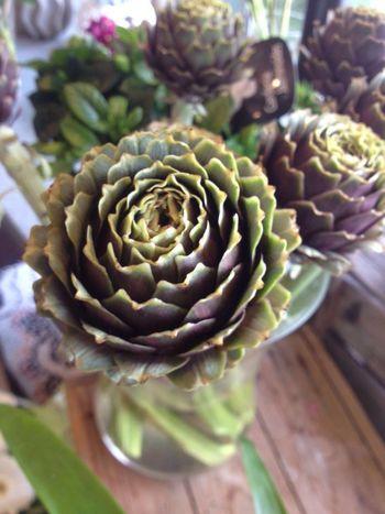 Some souvenirs Flowers,Plants & Garden Artichoke Florist
