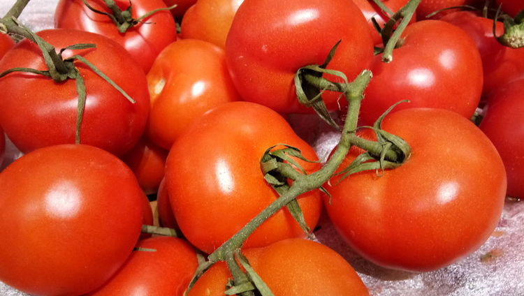 Vegetable Red Tomato Food And Drink Food Freshness Healthy Eating No People Indoors  Close-up Full Frame Day