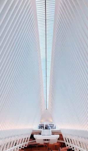 The Oculus -