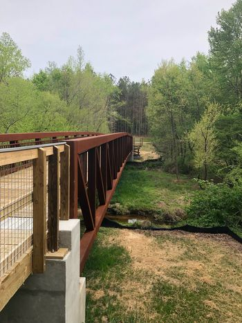New foot bridge through park Steel Steel Structure  Foot Bridge Plant Tree Nature Architecture Built Structure Sky Day Growth Wood - Material No People Sunlight Green Color Tranquility Railing Outdoors Tranquil Scene Land Footpath Shadow Building Exterior