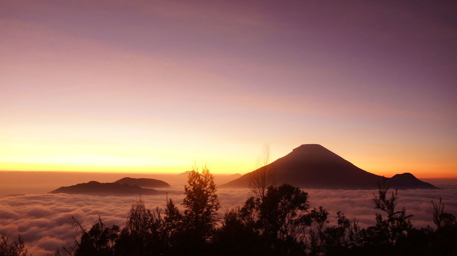 Sunrise in Sikunir, Dieng, Indonesia EyeEmNewHere EyeEm Selects Sikunir Dieng Jawatengah INDONESIA Sunrise Blue Darkness Colours Landscapes Yogyakarta, Indonesia Orange Sky Tree Mountain Sunset Silhouette Sky Landscape Star Field Moon Surface Astronomy Half Moon Spiral Galaxy Star - Space Milky Way A New Beginning
