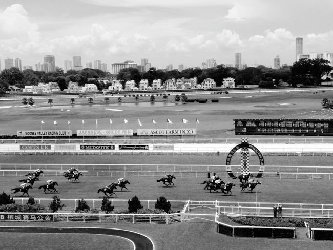 Sport Grass Playing Field Large Group Of People Competition Playing Stadium Sports Venue Baseball - Sport Sports Track Outdoors Day People Horse Racing Tree Sky Nature Penang Island