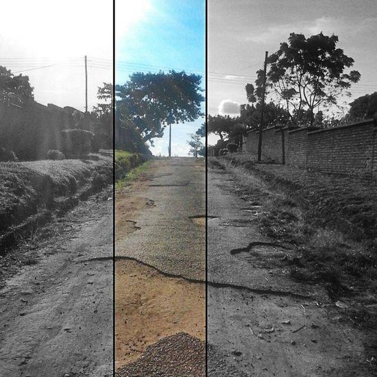 Desolate Blantyre Road Art Artistic Photography Photoart DzyneArtz Lonelyroad