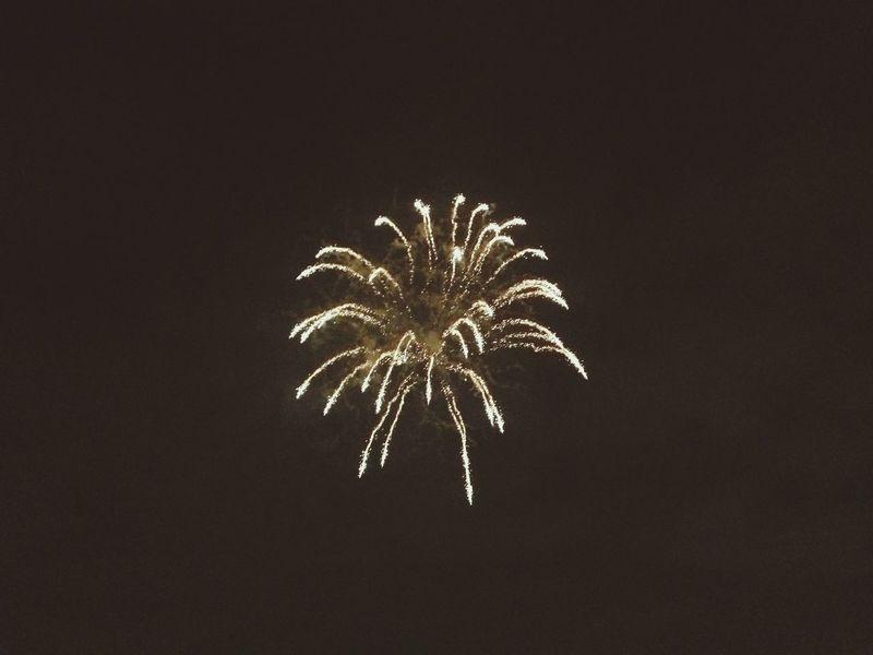 """厚木鮎まつり花火大会 Introducing Culture Of Japan Which Must Be Left To The Future…… """"未来に残す日本の文化"""" Fireworks Hanabi"""