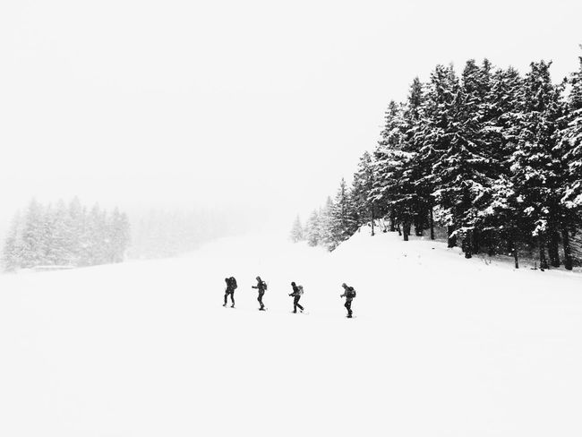 Racket walkers in the Jura Snow Mountains The Week On EyeEm The Action Photographer - 2015 EyeEm Awards The Great Outdoors - 2015 EyeEm Awards