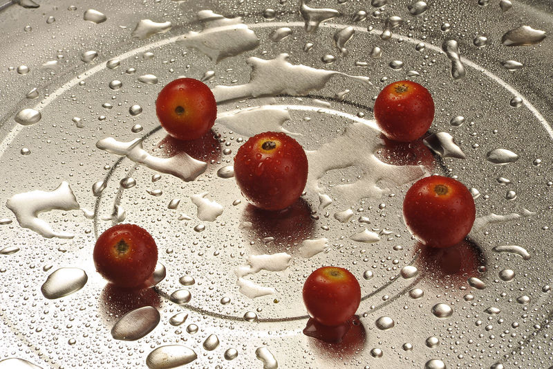 High angle view of red berries on water