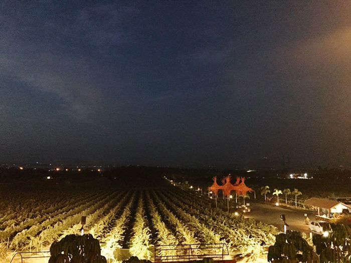Sula place where life is made. Sky Agriculture Illuminated Rural Scene Outdoors Night No People SulaVineyards Iphone7 Nashik Maharashtra Wine Sula Weekends Vineyardtour Life