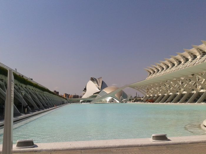 Architecture City Travel Bridge - Man Made Structure Modern No People Sky Outdoors Day Calatravaarchitecture Calatrava Architecture Valencia💕