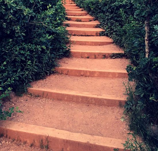 Follow Your Path 🚵🏼 // Stairs Mountain Hiking Adventure Colorado View Simplicity Peace And Quiet Nature Tranquility Simple Photography Path Traveling