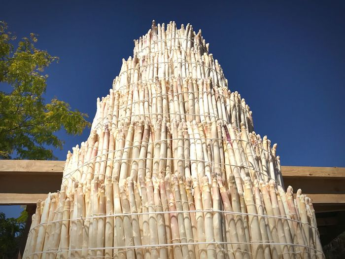 Tower of Spargel White Asparagus Asparagus Season Sky Low Angle View Clear Sky No People