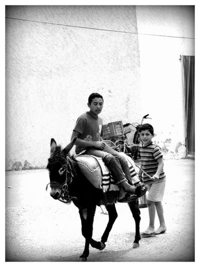 Kids Riding A Donkey