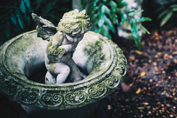 Close-up of angel statue in garden