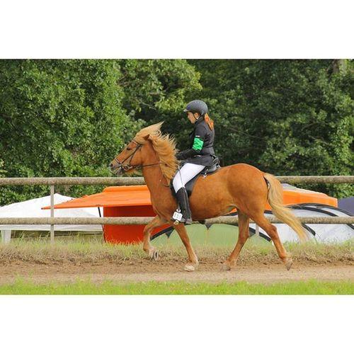 Ein Pferd kann mir alles brechen... bloß nicht mein Herz... 💕🐴Waldrennach 2015