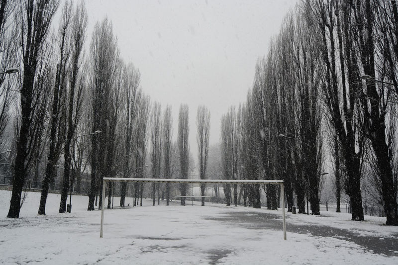 Offside EyeEmNewHere Football Football Goal Beauty In Nature Cold Temperature Covering Environment Football Field Forest Frozen Land Landscape Nature No People Non-urban Scene Outdoors Plant Scenics - Nature Snow Tranquil Scene Tranquility Tree Treelined Winter