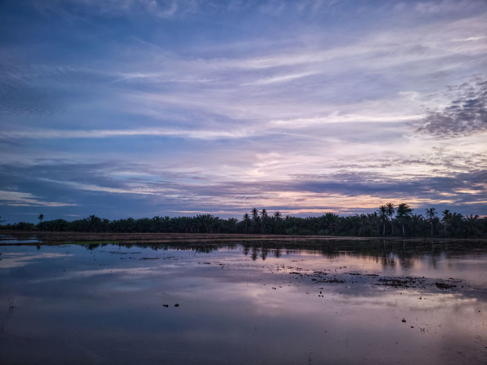 Scenic view of empty paddy field against blue sky after rain at dusk. Water Sunset Lake Blue Reflection Sky Landscape Cloud - Sky Reflecting Pool Reflection Lake Romantic Sky Dramatic Sky