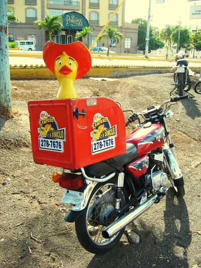 Motorcycle Pollo Campero Chicken Streetphotography Streetsale Sale