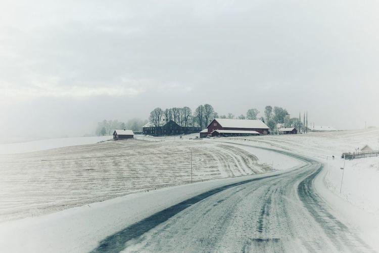 Winter Wintertime Winter Morning Farm Life Rural Scene Norway Nature EyeEmNewHere Shades Of Winter