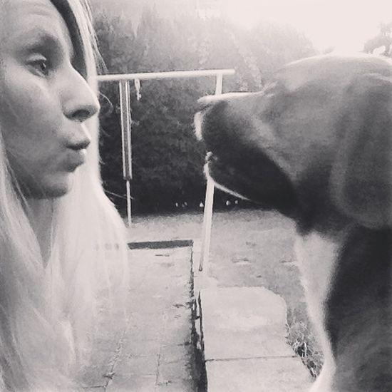 Shira will nur die Freezbee Dog