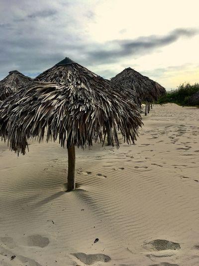 On the beach Prints On The Sand Varadero Beach - Cuba Cuba Collection Sky Cloud - Sky Land Beach Scenics - Nature Sand Nature Thatched Roof Idyllic