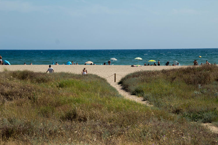 Beach Beauty In Nature Clear Sky Day Grass Group Of People Horizon Horizon Over Water Incidental People Land Nature Outdoors Plant Real People Scenics - Nature Sea Sky Tranquil Scene Tranquility Water